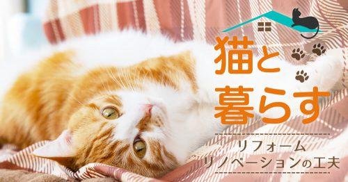 猫と暮らす リフォーム・リノベーション