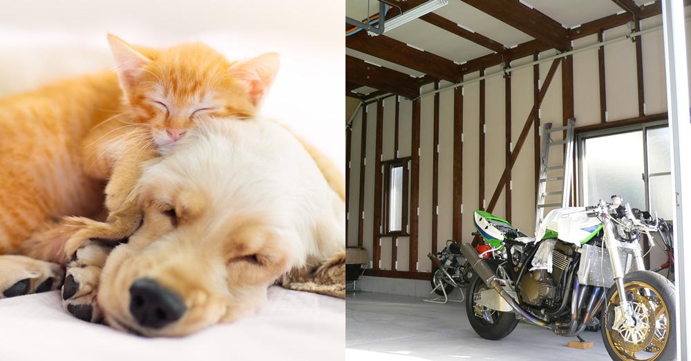 注文住宅で憧れのガレージハウスやペットと快適に過ごせる家へ!
