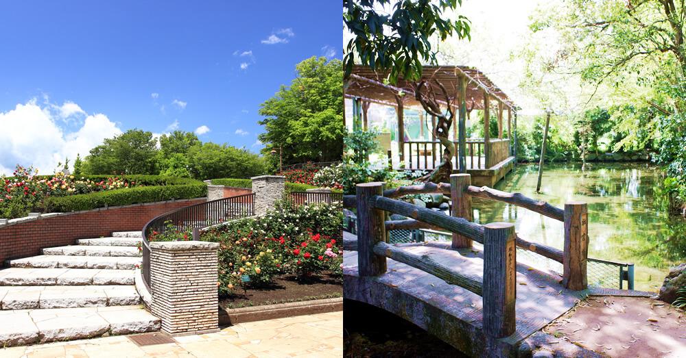 あきる野市の秋留台公園と二宮神社のお池
